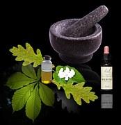 Las plantas medicinales empleo y preparación (parte 3 final)